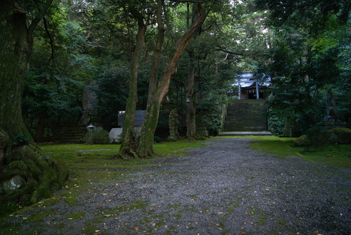 111107 日吉神社の境内.jpg