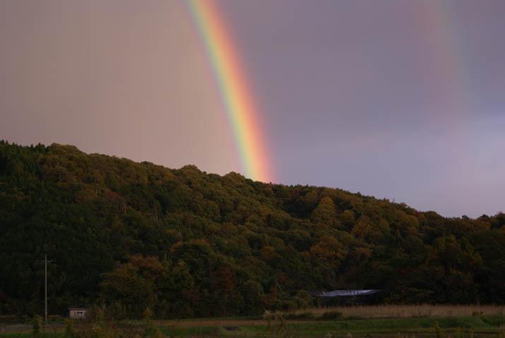 111125 壺瓶山から伸びる虹の柱.jpg