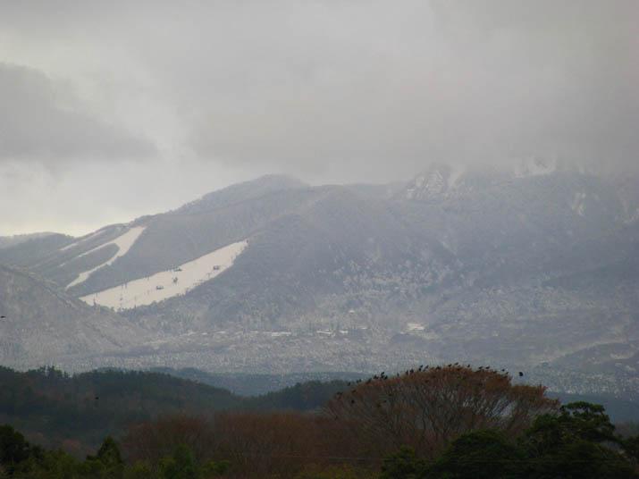 111210 大山の雪.jpg