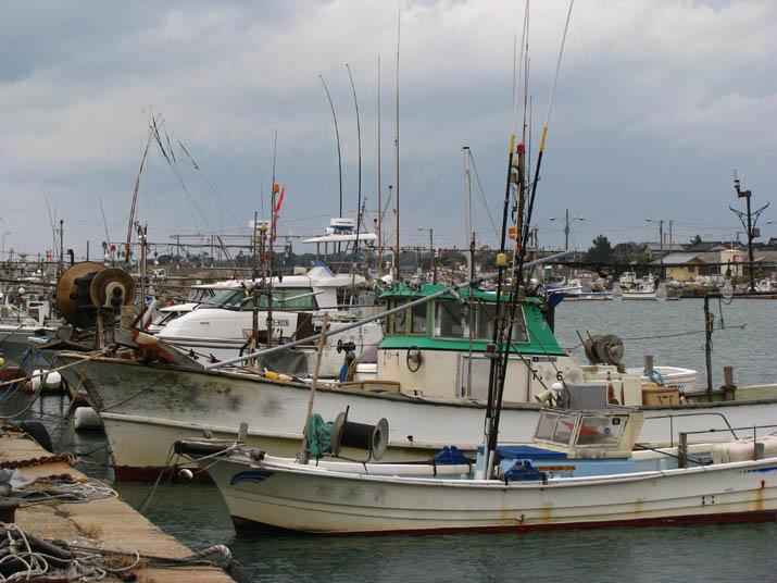 111218 淀江漁港 停泊中の漁船.jpg