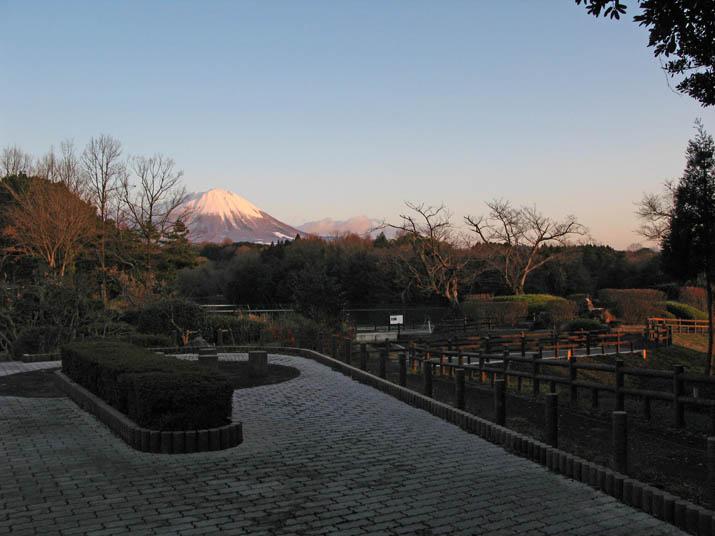 120117 岡成池の遊歩道.jpg