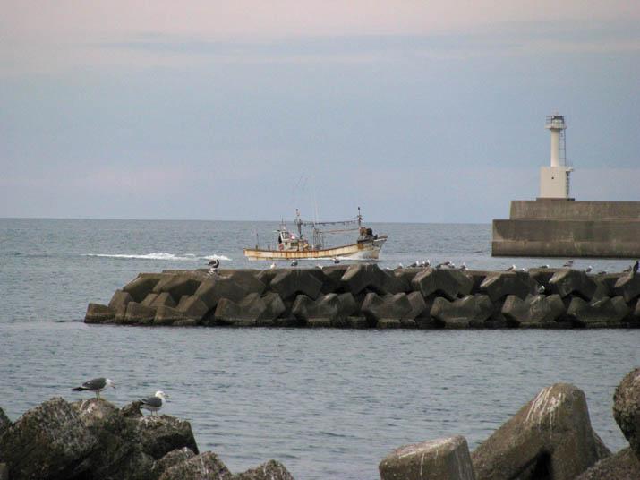 120119 淀江漁港へ戻る漁船.jpg