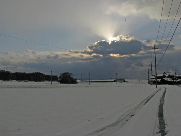 120126 淀江の畑は白い雪原に.jpg
