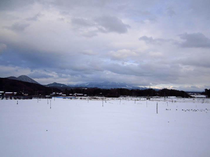 120203 大山の様子 いつもの場所.jpg