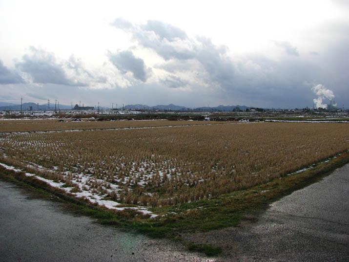 120210 冬の田んぼと遠くの景色.jpg