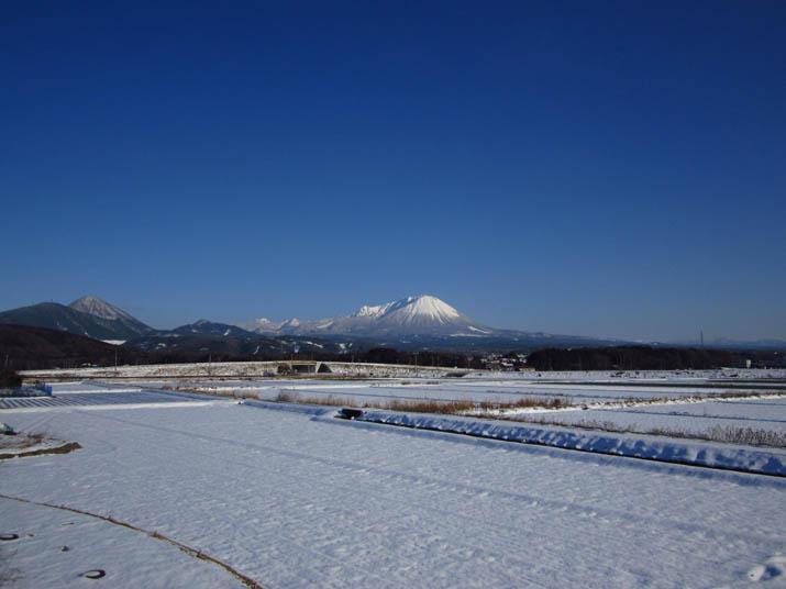 120220 雪原と大山.jpg