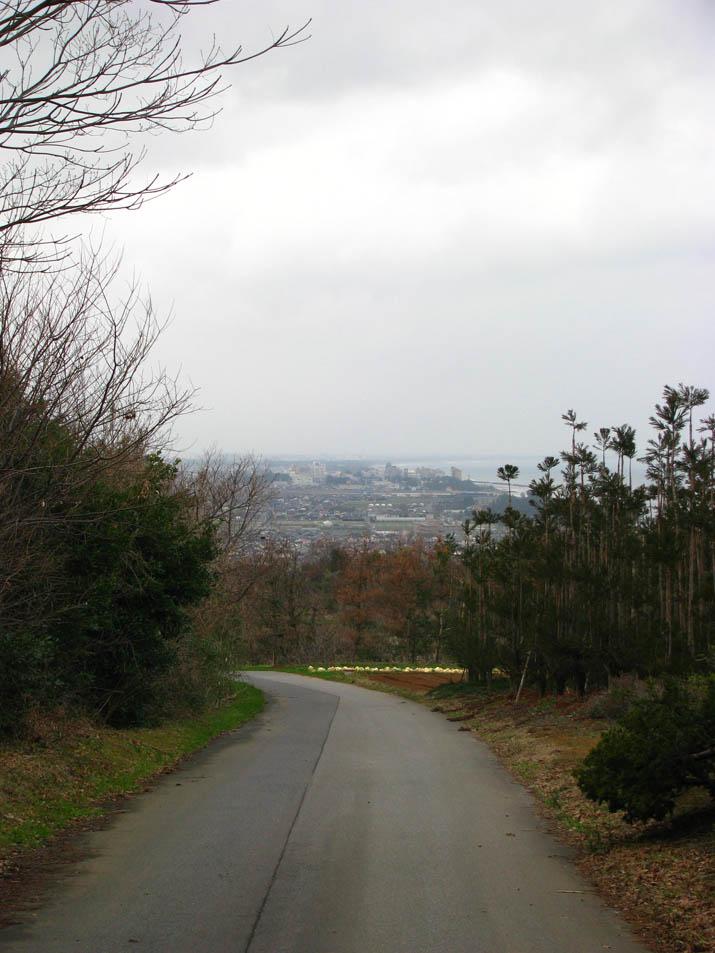120306 壺瓶山の山道.jpg