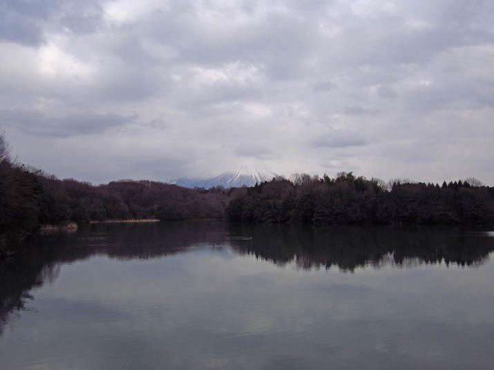 120407 曇りの岡成池.jpg