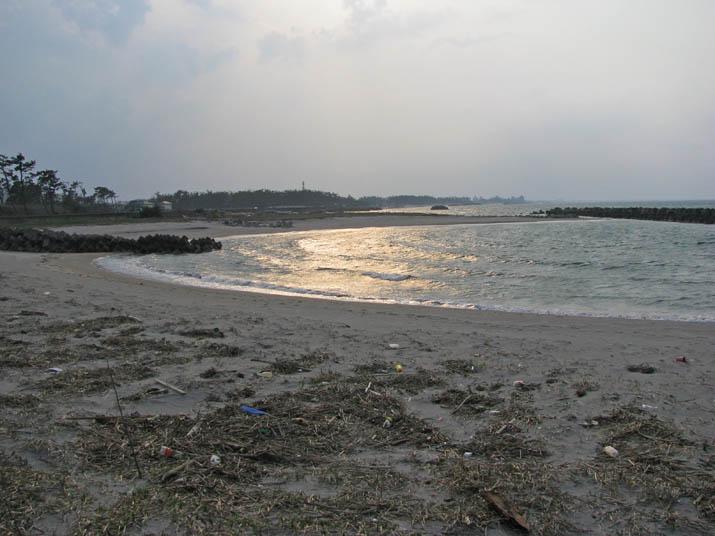 120409 春の海岸 淀江.jpg