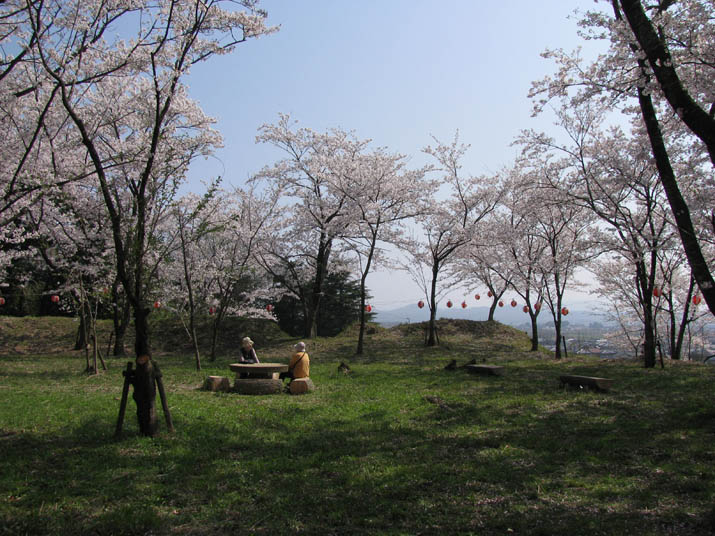 20120413 B尾高城跡の桜
