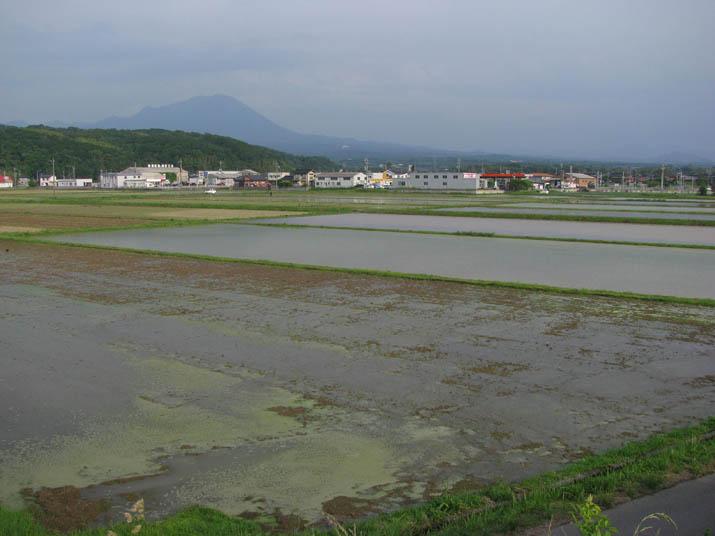 120526 水田と大山 その2.jpg