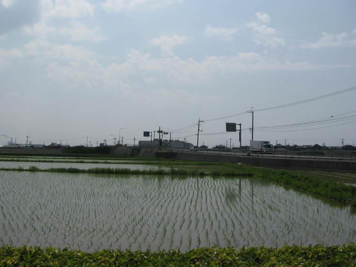 120603 田んぼとナフコと王子製紙.jpg