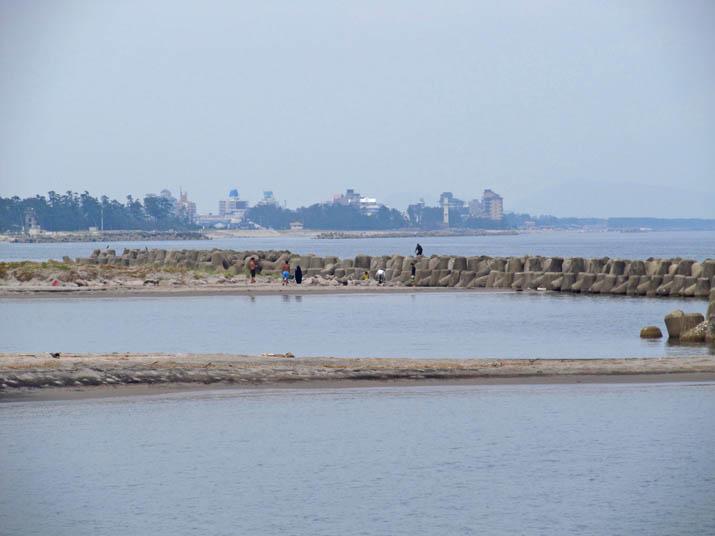 120812 海岸は大にぎわい.jpg