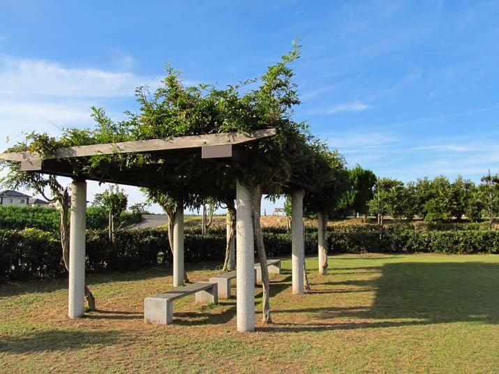 121009 ベンチと緑の屋根.jpg