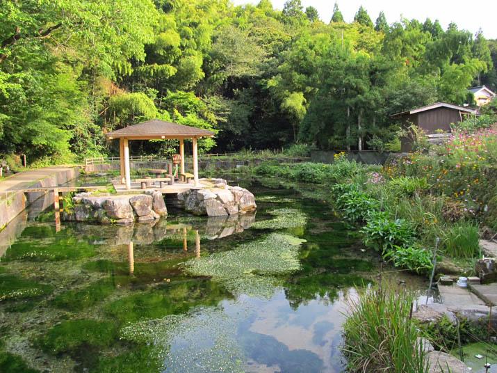 121017 本宮の泉 秋.jpg