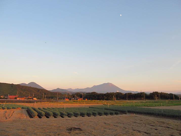 121024 夕日に光る大山.jpg