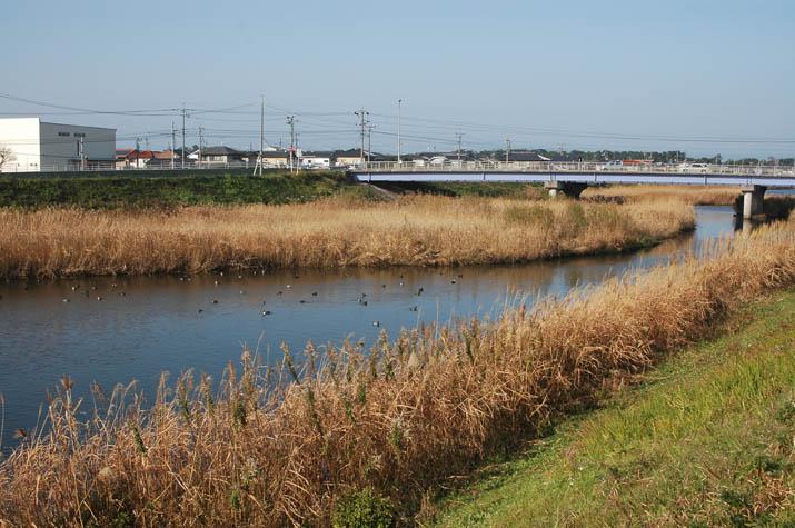 121130 2009年の佐陀川 9号線.jpg