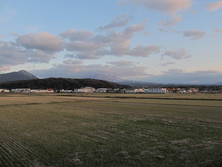 121221 冬の田畑と大山.jpg