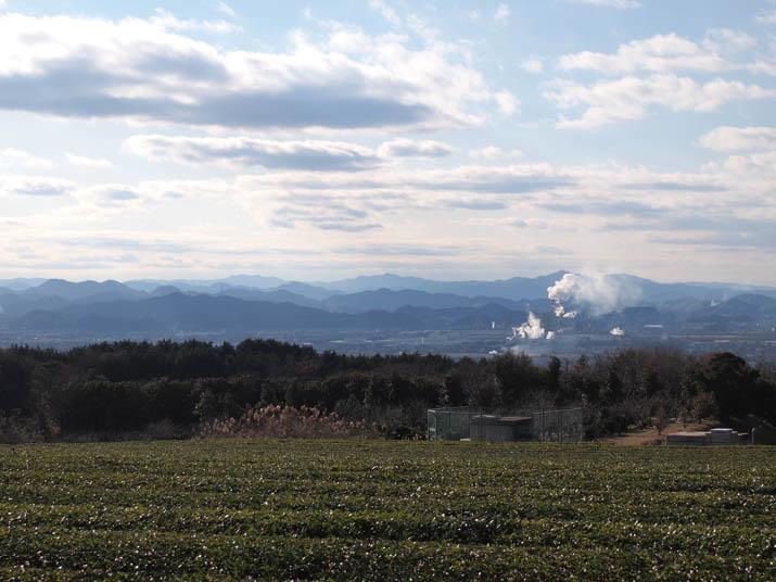 121227 米子市街地と壷瓶山の茶畑.jpg