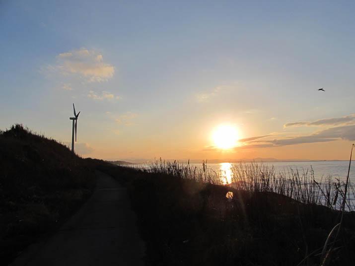 130112 大山町の海岸と風車.jpg