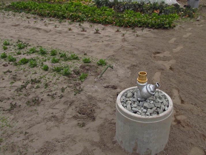 130226 新しい畑灌漑水路栓.jpg
