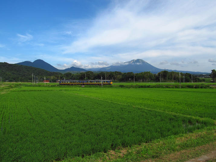 130719 緑の田園と大山.jpg