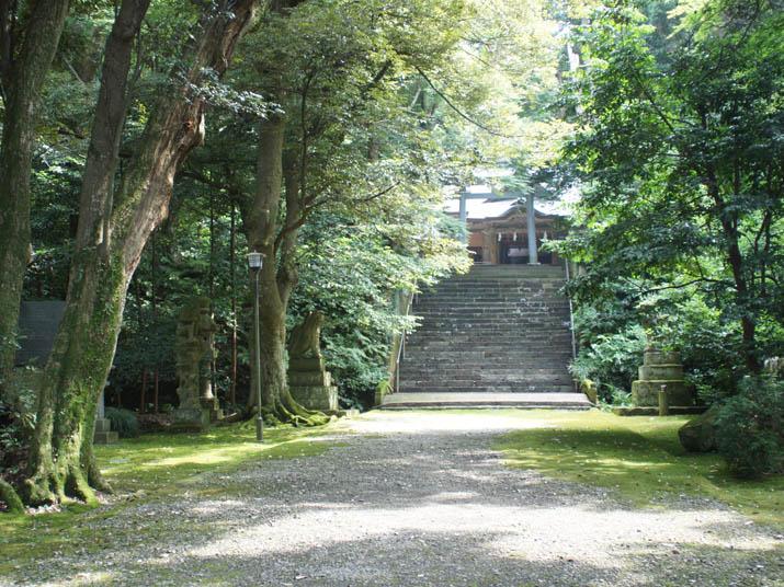 130730 日吉神社 境内の森.jpg