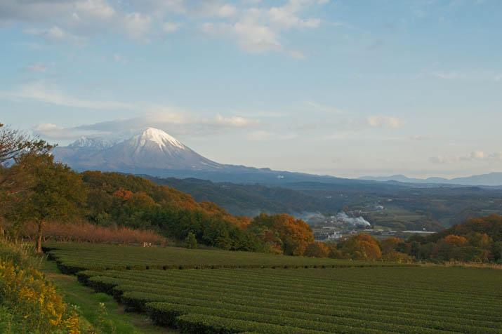 131123 冠雪と紅葉の大山jpg