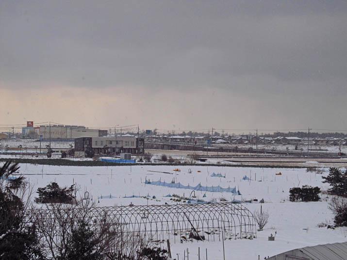 140205 雪に覆われた田園.jpg