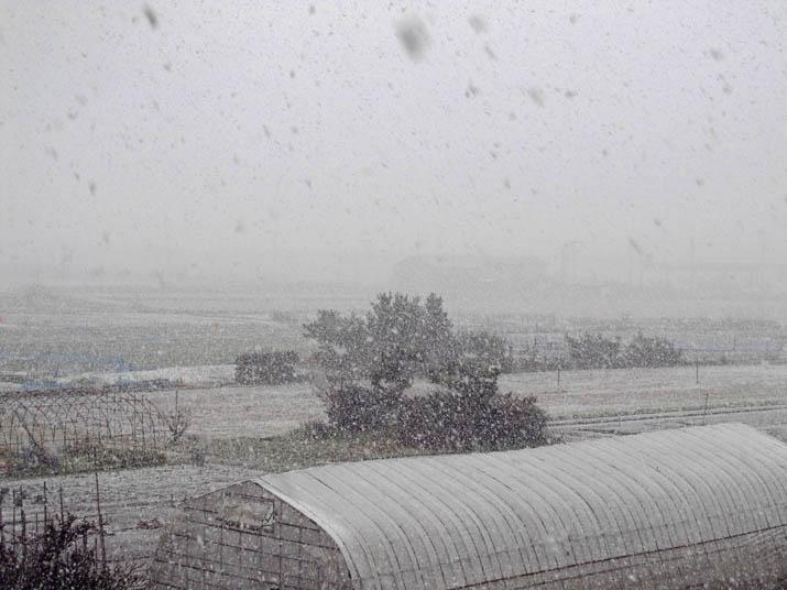 140306 激しく降る雪.jpg