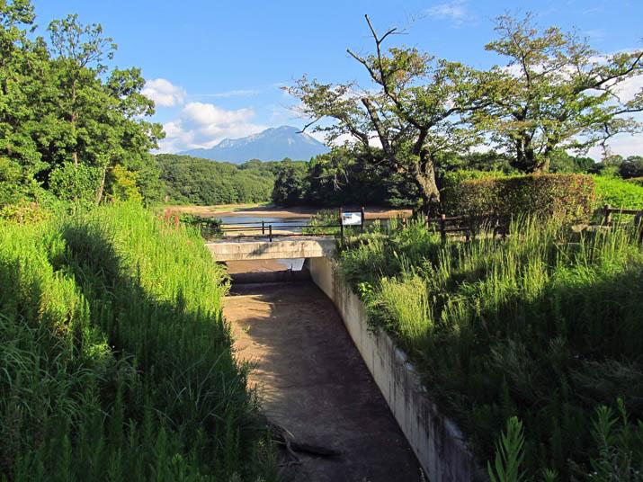 141002 岡成池は草が多め.jpg