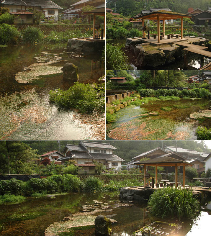 本宮の泉と周りの景色