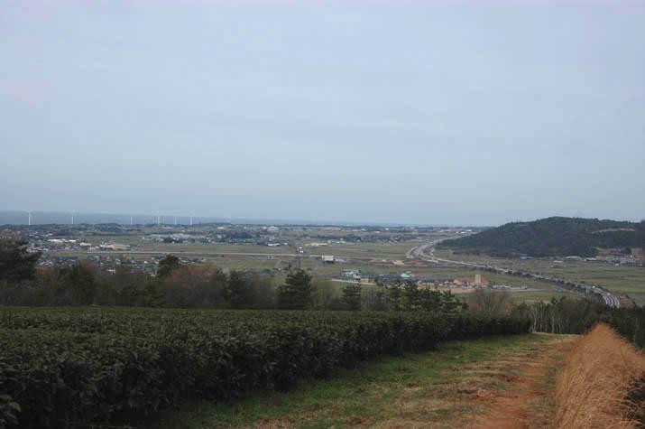 大山町の風車と山陰道